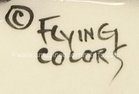 Flying Colors Hallmark